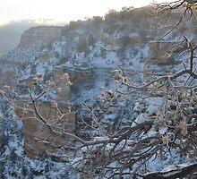 Grand Canyon Snow by LizzieMorrison
