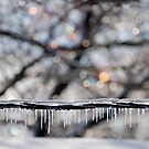 Ice  by LizzieMorrison