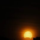 Solar Eclipse - November 14 2012  by EOS20