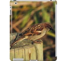 Sparrow iPad Case/Skin