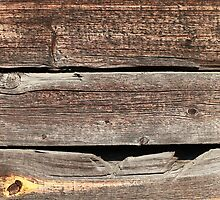 board fence by mrivserg