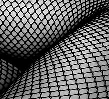 Fishnet Legs by Victoria Lincoln