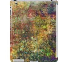 Abstract Rainbow. IPad. iPad Case/Skin