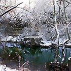 Cherokee Park Big Rock Snow by LizzieMorrison