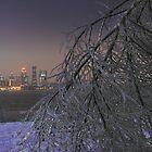 Louisville Winter by LizzieMorrison