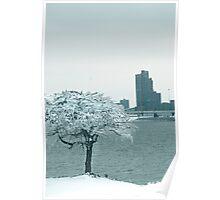Louisville Ice  Poster