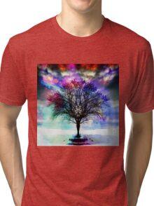 Winter beauty Tri-blend T-Shirt