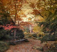 A Formal Garden by Jessica Jenney