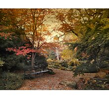 A Formal Garden Photographic Print