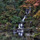 The Falls at the Japanese Gardens by TRDesigns