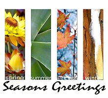 Seasons Greetings (bright) by Michelle Ricketts