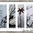 Seasons Greetings (muted) by Michelle Ricketts