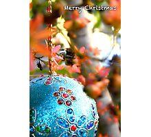 Christmas Bush Bauble Photographic Print