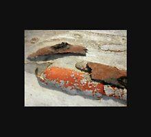 Bark with Lichen, Black Mountain, Canberra, A.C.T. Australia. Unisex T-Shirt