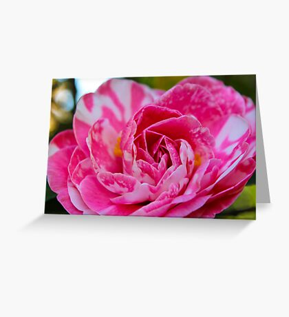 Marble Petals Greeting Card