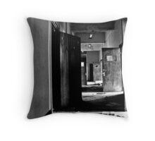Doors Of Reception Throw Pillow