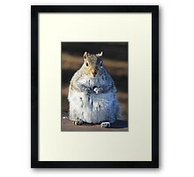 I'm not fat I'm insulating for the winter Framed Print