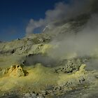 Steaming sulfur vents. White Island volcano. New Zealand. by Ian Hallmond