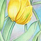 Yellow Tulip by joeyartist
