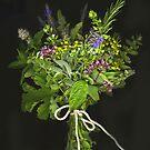 An Herbal Bouquet by Barbara Wyeth