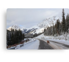 Alone on the road Canvas Print