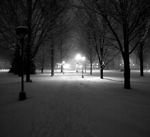 Winter Path by Josrick
