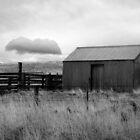 Hut and Cloud Flinders Island by Andrew  Makowiecki