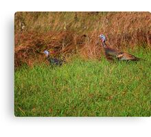 Geeky Gobblers Canvas Print