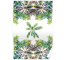 Colorful fern ornament Poster