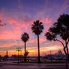 The Salmon Pink Sunset by manateevoyager
