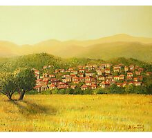 Golden Rural Scene Photographic Print