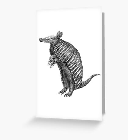 Pencil drawn armadillo Greeting Card