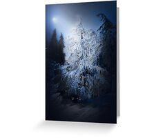 Snow Covered Tree at Night Greeting Card