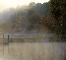 Mist In The Morning by Carolyn  Fletcher