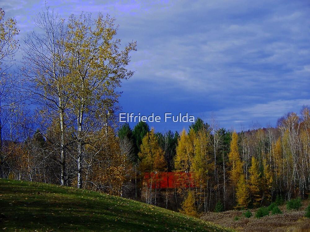 The Slope ! by Elfriede Fulda