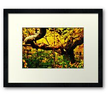 —& there stands a quiet trestle, hidden amongst the wood Framed Print