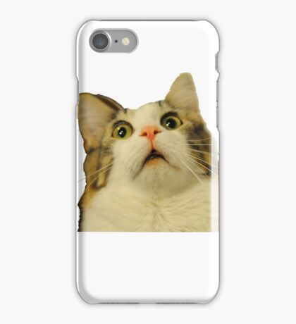 upset cat  iPhone Case/Skin