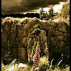 The Enchanted Doll Tower of Gidleigh by angelvixen
