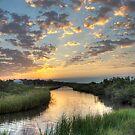 Breaking Dawn by Jonicool
