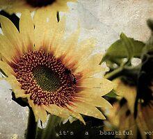 Beautiful World by jenndalyn