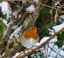 Merry Christmas by lynn carter