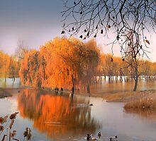 Flooded Willows by Igor Zenin