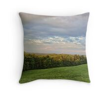 A dedication for the victims of Hurricane Sandy Throw Pillow
