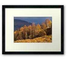 Light in Glen Lyon, Perthshire, Scotland Framed Print