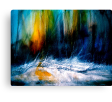 Where Silence Lives.. Canvas Print