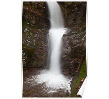Waterfall, Rydal Water Poster