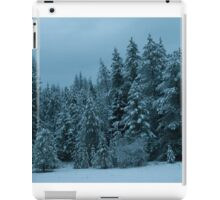 Family of Pines on Aladdin Road iPad Case/Skin