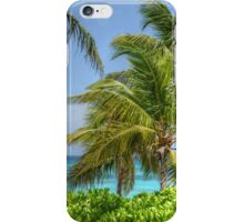 Tropical Scenery | iPhone/iPod Case iPhone Case/Skin