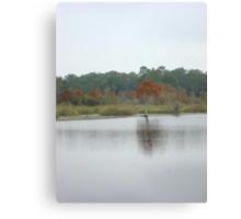 BEAR CREEK CYPRESS ON A GLOOMY DAY Canvas Print