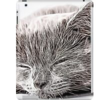 Wild nature - cat #3 iPad Case/Skin